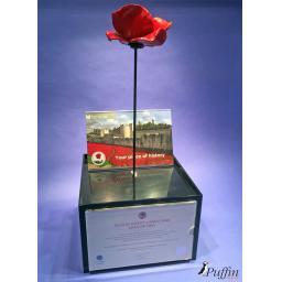 Poppy Display Case (WITH STEM)