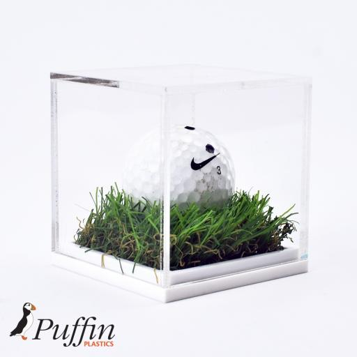 Golf Ball Display Case - Grass Effect Base