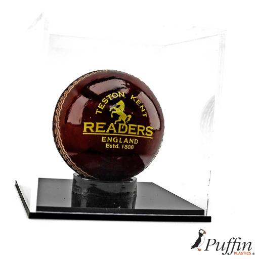 Cricket Ball Display Case