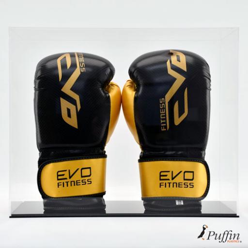 Boxing Glove Display Case - Double Portrait Colour Base