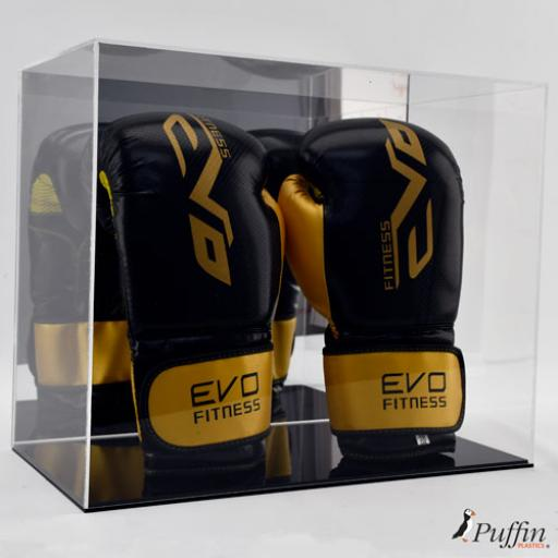 Boxing Glove Display Case - Double Portrait (With Mirror Backing)