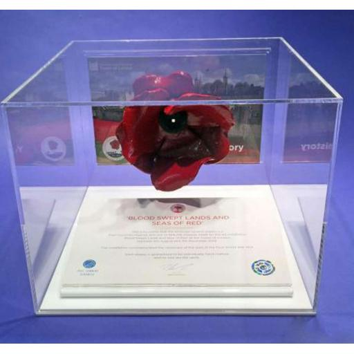 Poppy Display Case - White
