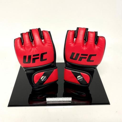 MMA-Glove-Display-Case-3.jpg