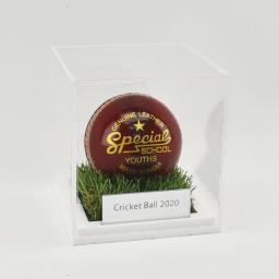 Cricket-Ball-Grass-Effect.jpg-2.jpg