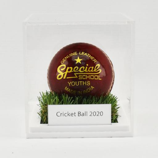 Cricket / Tennis Ball Display Case With Grass Effect Base