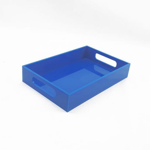 Blue-tray-image-2.jpg